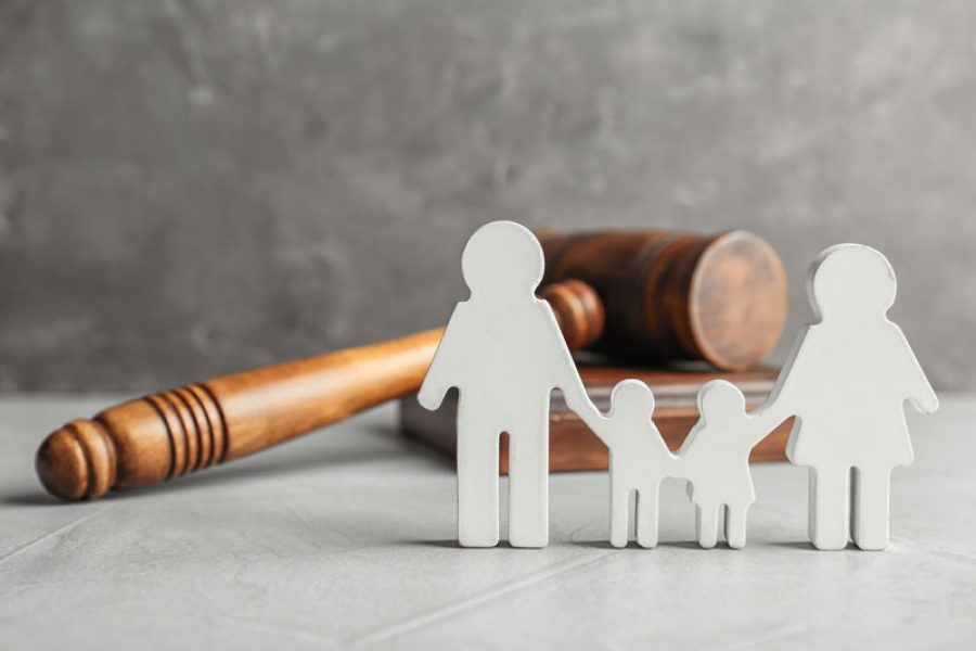 The New Family Contract Law:  A New Era For the Succession of Family Estates