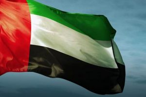 Can expats apply for UAE Citizenship?